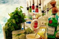 Back bar 2016 gin