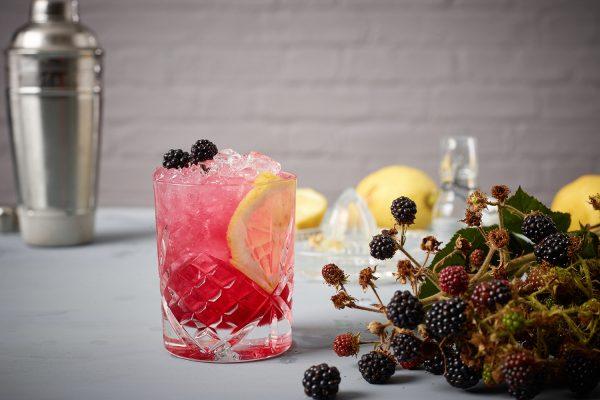 bramble cocktail bar hire